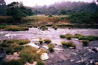 Rios da América Central