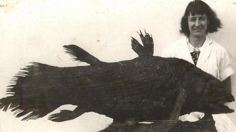 O nome «Latimeria chalumnae» juntou Courtenay-Latimer ao rio Chalumna