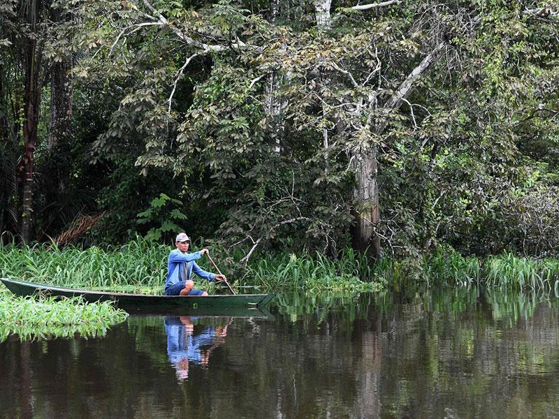 Barcelos: os peixes tropicais garantem a economia da população local