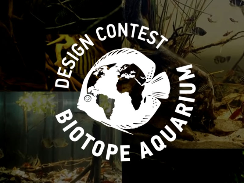 Oleg Labutov é o criador do Biotope Aquarium Design Contest