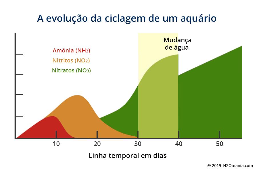 A evolução da ciclagem de um aquário